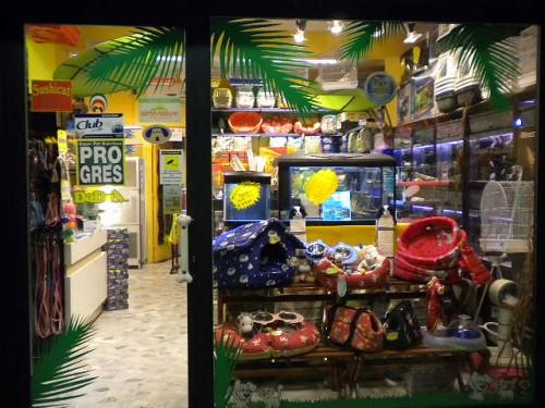Negozi per animali roma negozi x animali arcaplanet centro for Auchan arredamento
